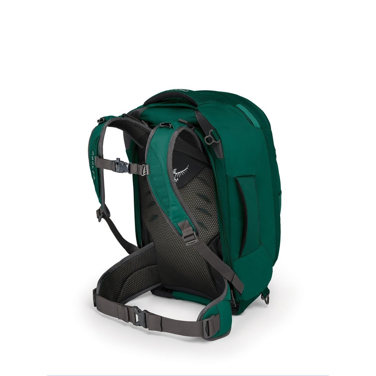 Hot Deals | Osprey FAIRVEW 40 - RAINFOREST GREENRAINFOREST GREEN